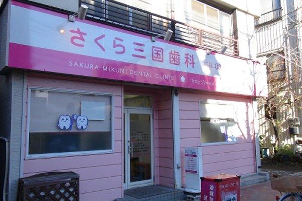 6-sakura